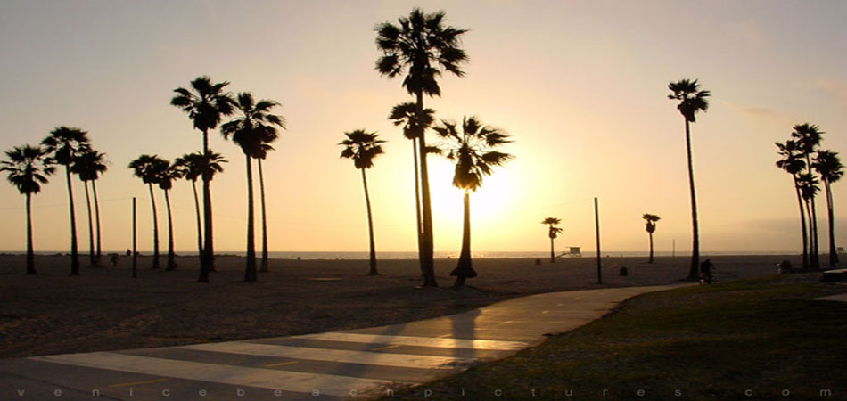 venice-beach-bike-path