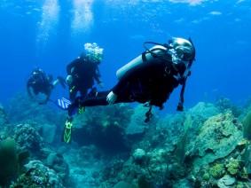 Bahamas15